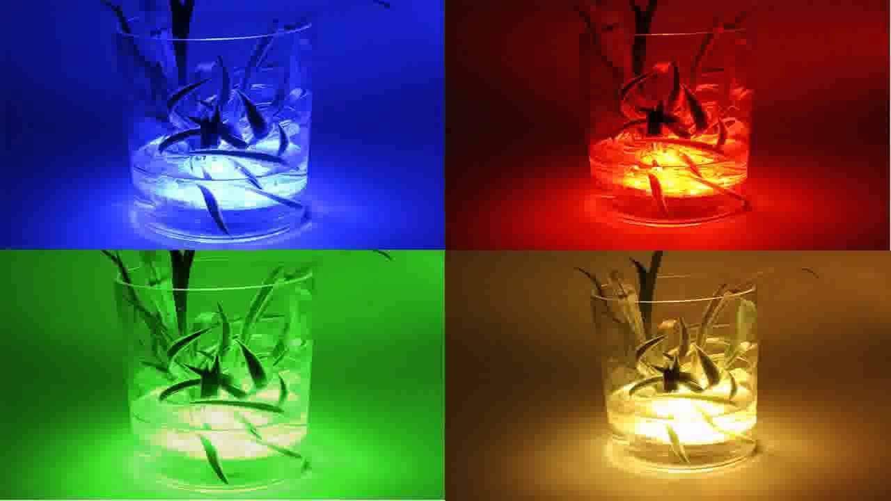 Modern Party In The Tub Lights Gift - Bathtub Design Ideas - valtak.com