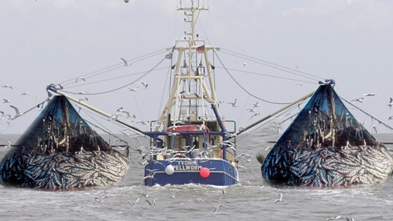 Fishing boat trawler two fishermen a big catch youtube for Large fishing boats
