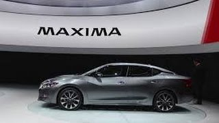2016 Nissan Maxima Test Drive/Review by Average Guy Car Reviews