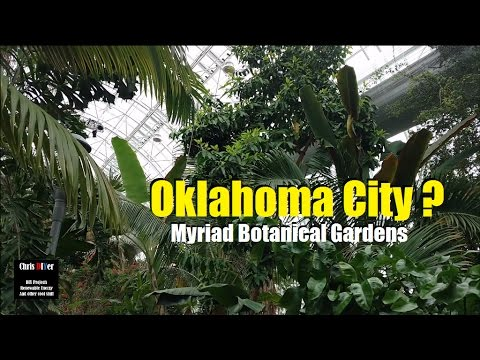 Excellent scenery: Oklahoma City Myriad Botanical Gardens