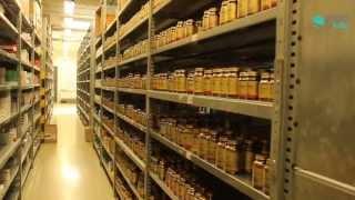 Lunedì 20 maggio 2013 l'associazione aisf, associazione italiana studenti di farmacia, in collaborazione con la facoltà farmacia dell'università napoli...