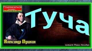 Александр Пушкин   Туча   читает Павел Беседин