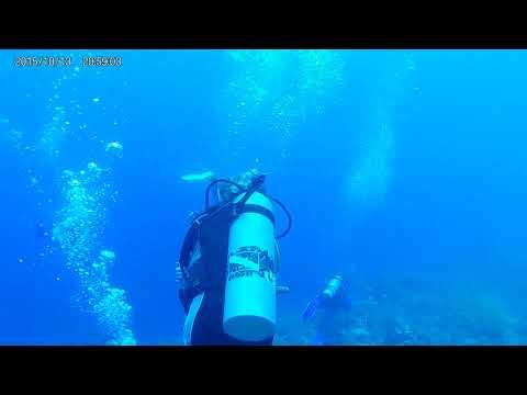 scuba Grand Turk 2nd trip
