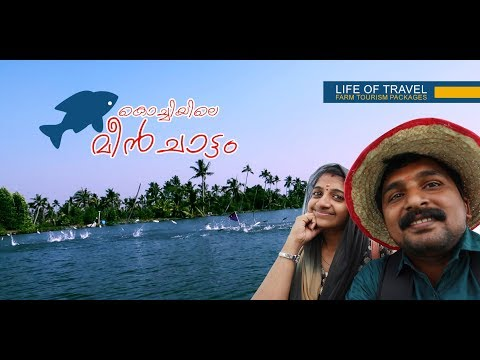 കൊച്ചിയിലെ മീന്‍ ചാട്ടം | Matsyafed Fish Farm and Aqua tourism center | Life Of Travel By Ma Media