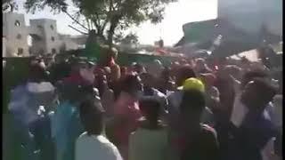 اجمل اغاني الثورة السودانية...حتسقط حتسقط ونعرس كنداكة...حتسقط حتسقط ونعرس شفاتة