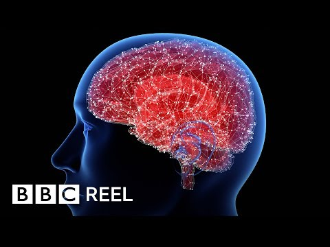 The simple brain training that can help you lose weight BBC REEL