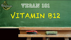 Vegan 101: Should You Supplement Vitamin B12?