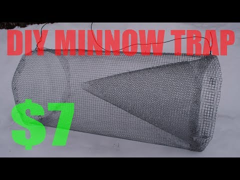 DIY Minnow Trap [2018]