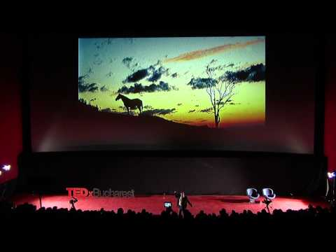 TEDxBucharest - Cristian Lascu