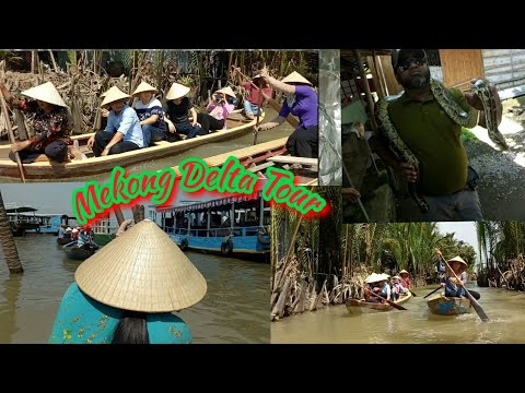 AMAZING MEKONG  DELTA TOUR 2018 | A DAY TOUR AT HOCHIMINCITY