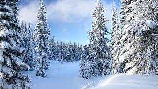 PJTV - Winter Is Coming for Global Warming: Is Climate Change the Hoax of the Century?
