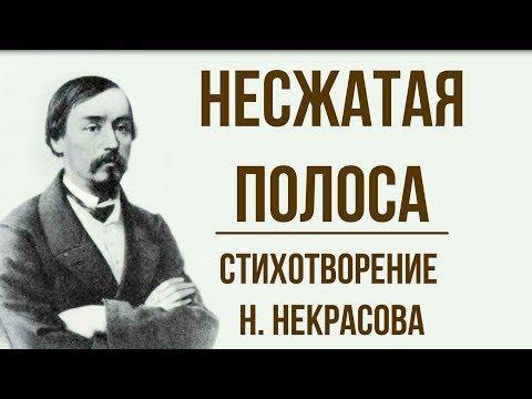 «Несжатая полоса» Н. Некрасов. Анализ стихотворения