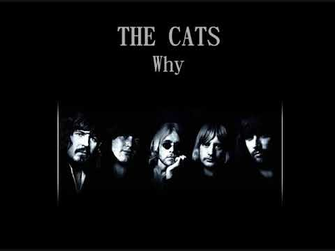 The Cats - Why