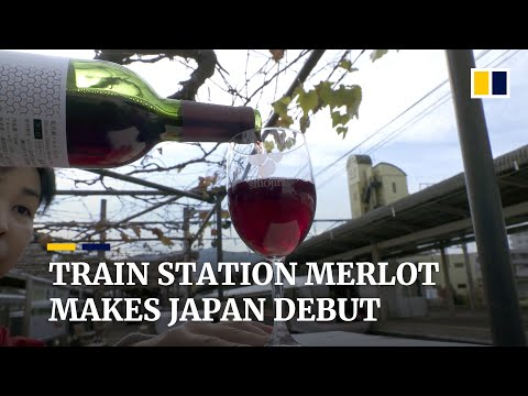 wine article Japanese Train Station Releases Merlot Wine From Grapes Grown On Platform Vineyard