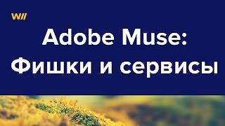 Уроки Adobe Muse: фишки и сервисы