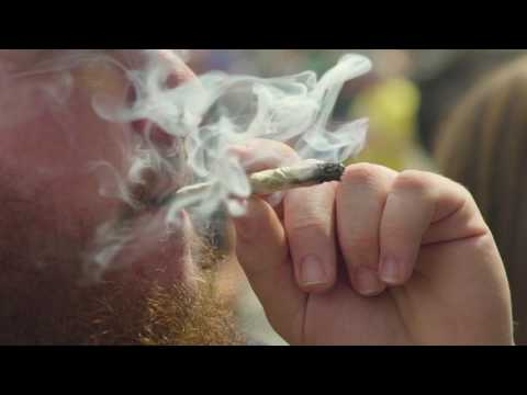 2017 Midwest Cannabis Cup Recap