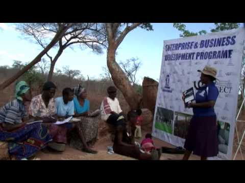 ZIMBABWE WOMEN'S BUREAU (ZWB) PROFILE