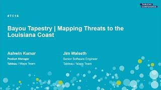 Bayou tapestry | Mapping threats to the Louisiana coast