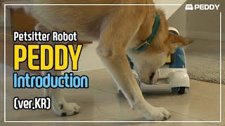 PEDDY | Pet-sitter Robot (ver.KR)