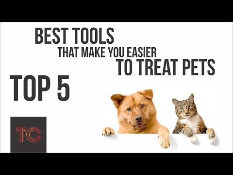 Do You Animal Lovers? TOP 5: The Best Tools That Make You Easier To Treat Pets