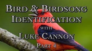 Bird & Birdsong Identification with Luke Cannon Part 4