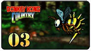 Detonado Donkey Kong Country Br - 3º Mundo - Vale Vinhas