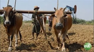 Farmers Fear Losing Land to Oil Drills