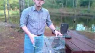 Perch Trappin' - Bait Fish Trap, Catch Live Bait & Save Money! - Bream Trap