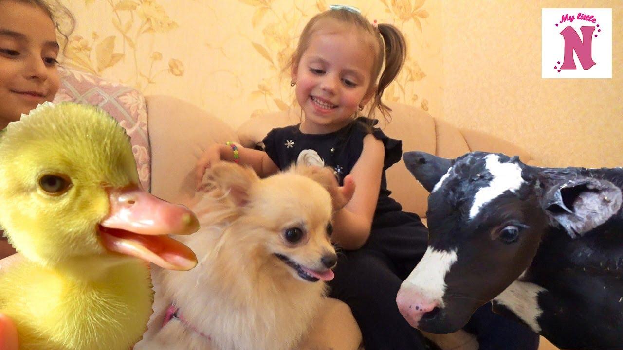 ЧЕЛЛЛЕНДЖ Игрушки vs Настоящие ЖИВОТНЫЕ Корова улитки КОШКА хомяк и СОБАЧКА Challenge