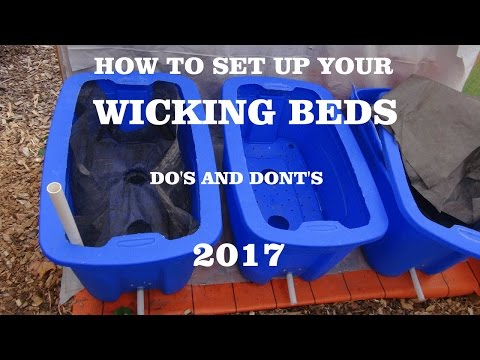 ⟹ WICKING BEDS, How to set them up, do's and don't s an how i feel about them #bed