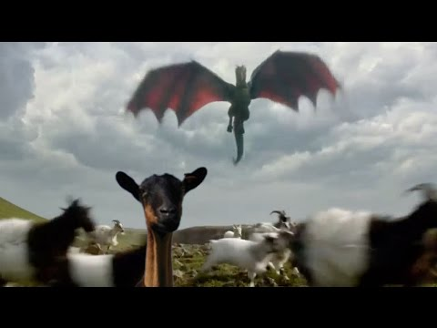 10 Amazing Dragon Facts
