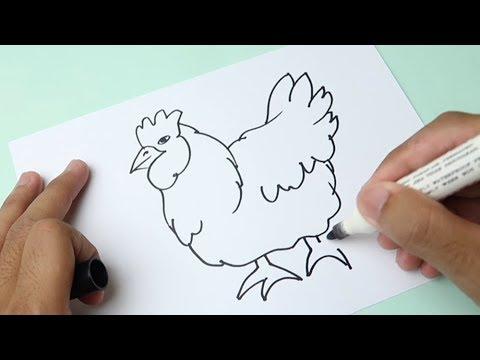 Cara Menggambar Ayam Betina Youtube