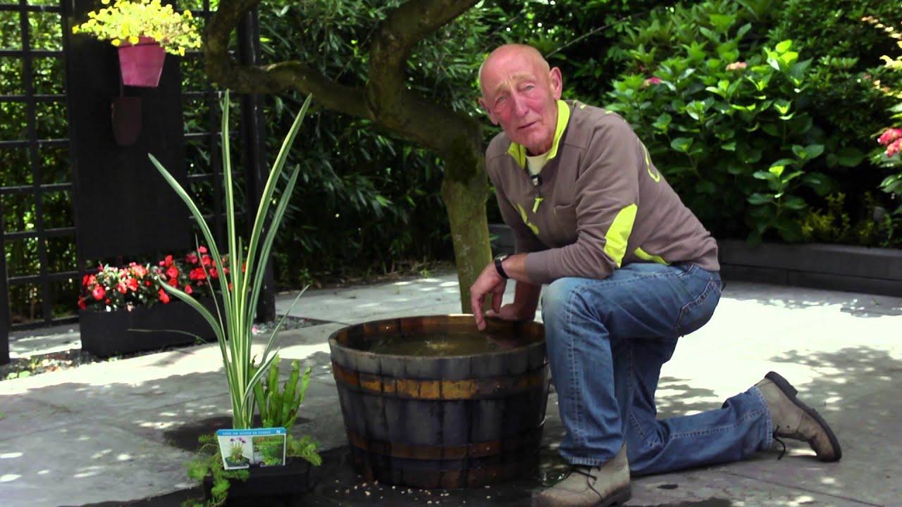 Hoe leg ik een mini vijver aan door intratuin amsterdam for Intratuin amsterdam