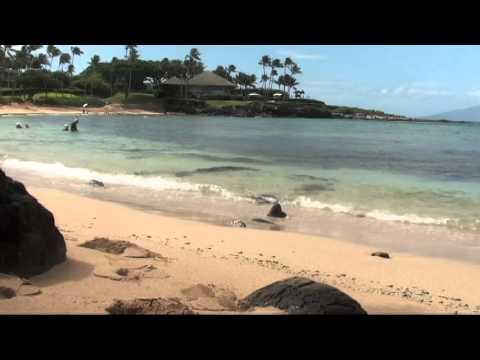 Windy Day at Maui Beach, Hawaii