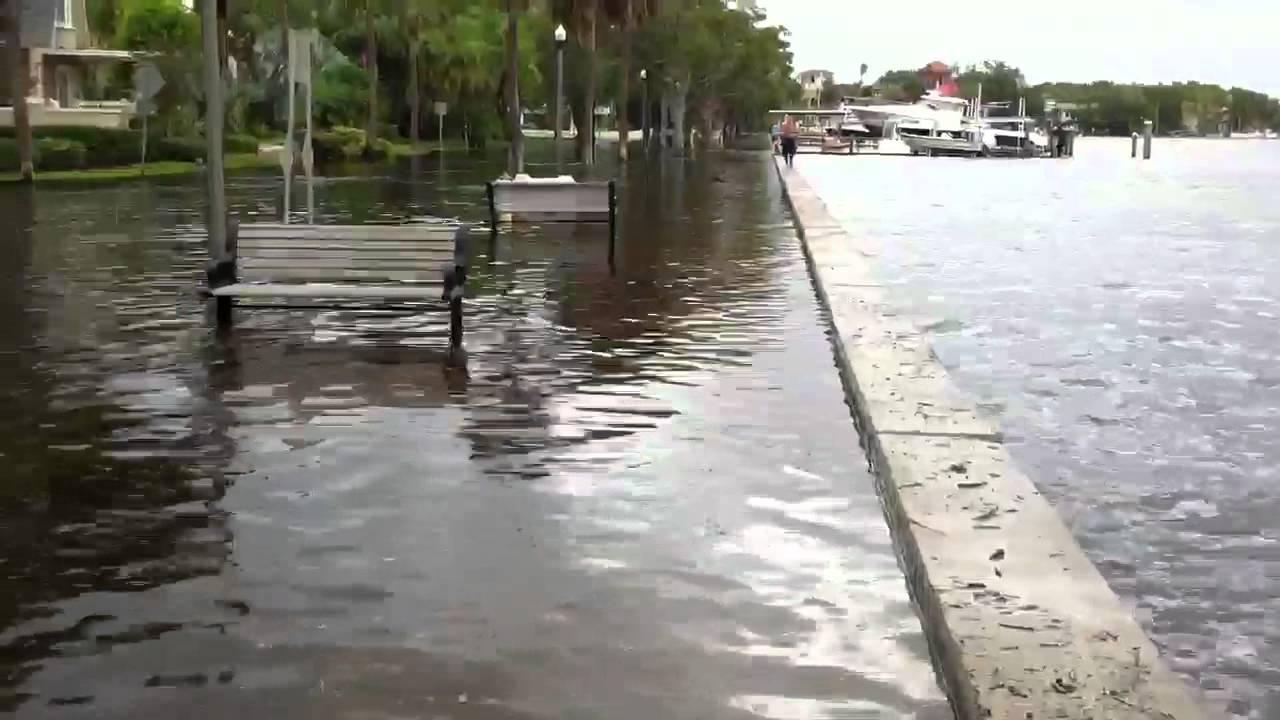 Cars Runners In Flood Water St Petersburg Fl