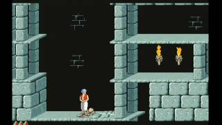 Prince of Persia (Macintosh 1992)
