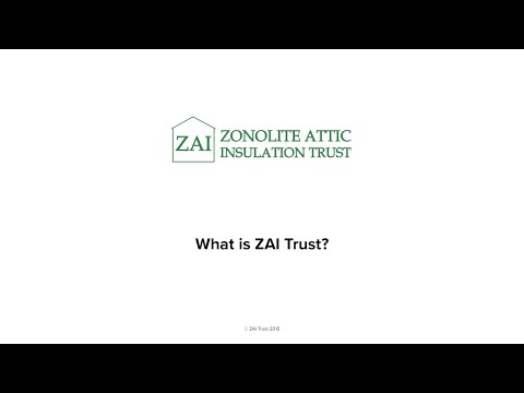 what-is-the-zai-trust?