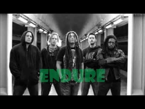 Nonpoint - Endure - Lyric Video