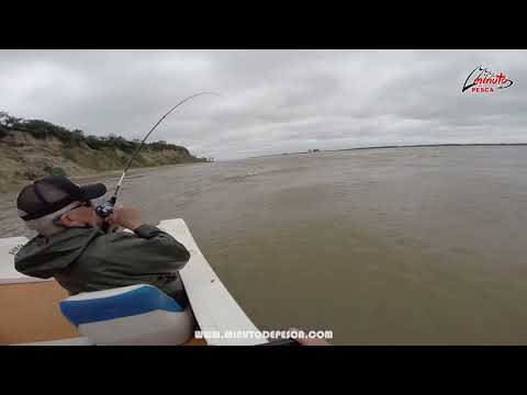 Captura de Surubi en Santa Elena - Entre Rios - Argentina - Vivi tu Minuto De Pesca