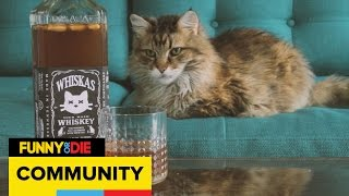 Tiny Muscles: Whiskey for Cats
