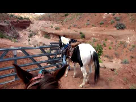 Vermillion Cliffs by Horseback