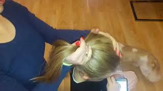 Poradnik dla tatusiów, Jak zrobić córce kitka ? How to make a daughter a ponytail ?