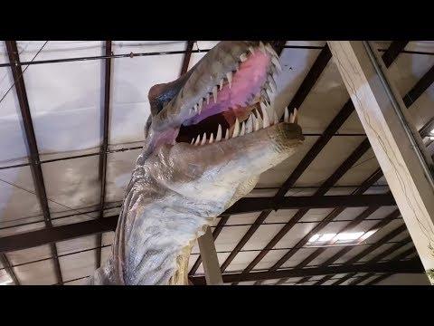 Real Life Dinosaurs! T-REX!!