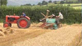 Vintage tractor (ballymurphy club) Reaper binder at work harvesting Oats 9th August 2011 Ireland p4