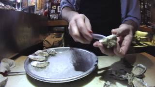 Jax Fish House - Oyster Month