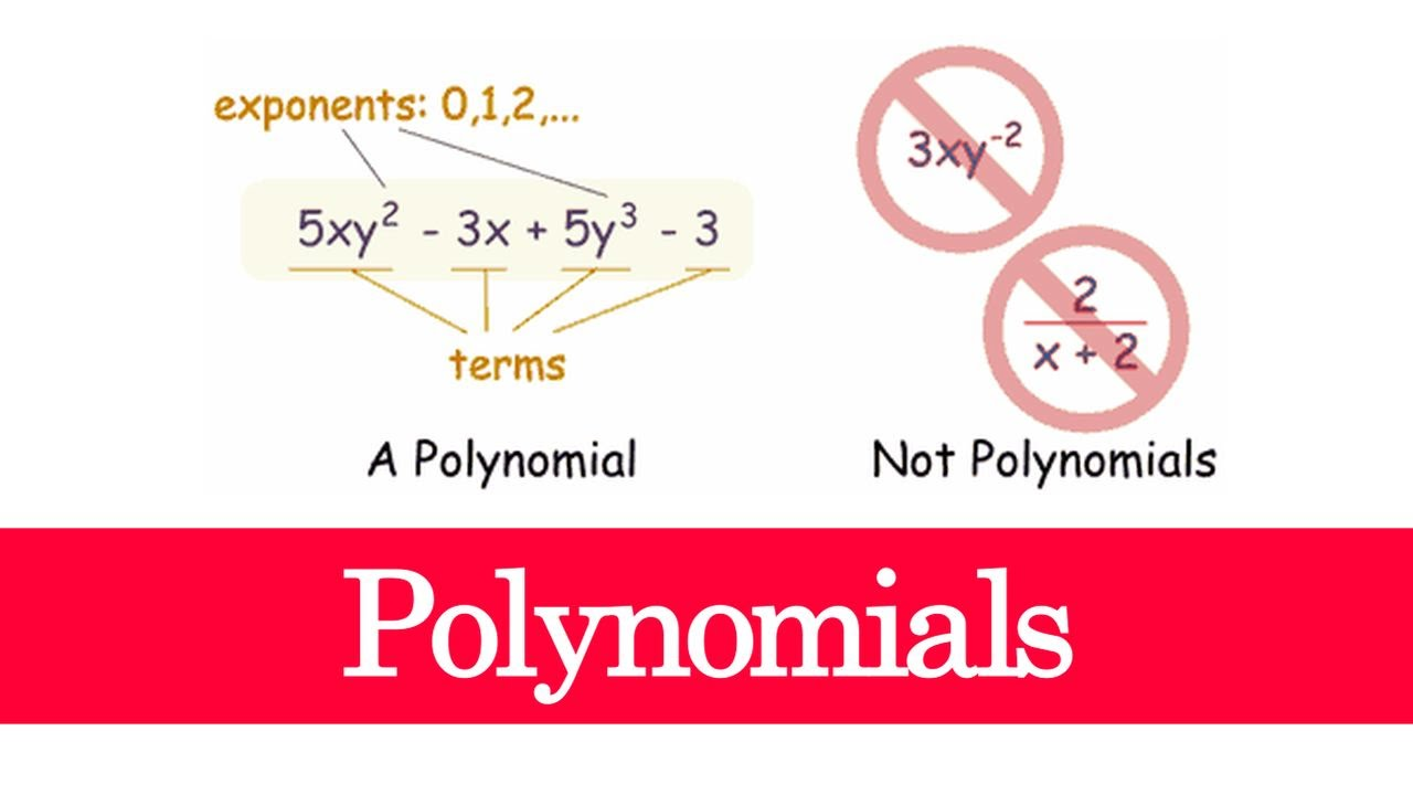 Help with questions on Polynomials?