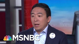 Andrew Yang Proposes 'Personalized' Guns As Way To Stem Violence | Morning Joe | MSNBC