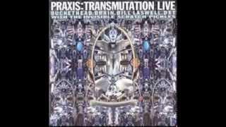Play Transmutation 2 (live)