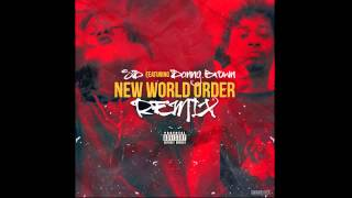 "SD - ""New World Order (Remix)"" (feat. Danny Brown) [Official Audio]"