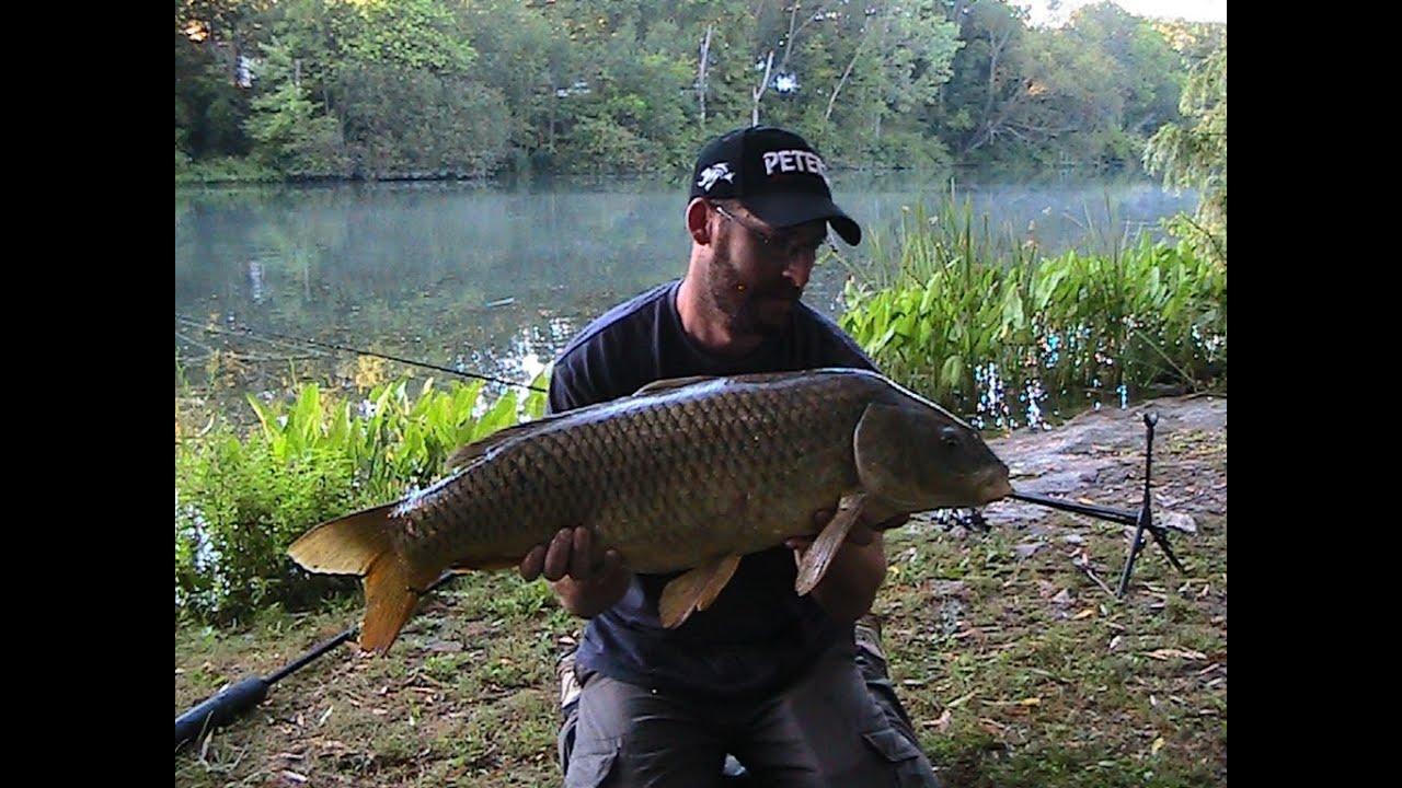 River Carp Fishing | River Carp Fishing Youtube